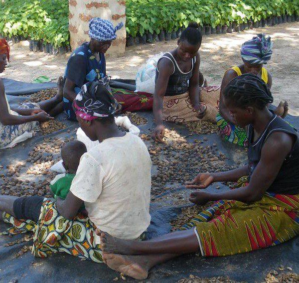 La_situation_sociale_au_Cameroun