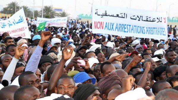 Dorits-de-l-homme-Mauritanie